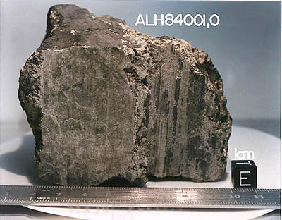 photo of the famous meteorite ALH84001