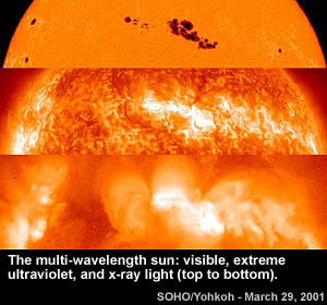 SOHO/Yohkoh image of the Sun in visible, extreme ultraviolet and X-ray wavelengths